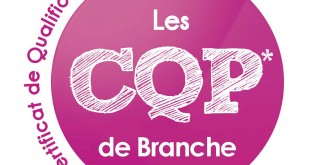 Certificat de qualification professionnelle