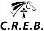 Comité de Bretagne d'Equitation